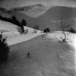 4. Jalovcový kopec u Čichova pod sněhem (dr. Fr. Kubica)