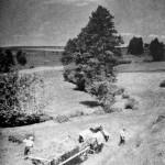 7. Senoseče na Třešťsku (K. O. Hrubý)