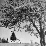 15. Turistická chata na Čeřínku (757 m n. m.) (Jar. Mikulášek)