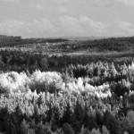 Javořice – JV panorama